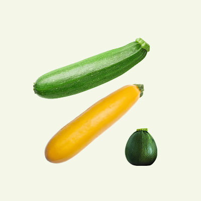 product_courgettes_divers